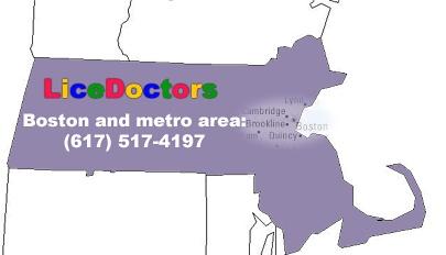 Metro Boston Lice Removal Service