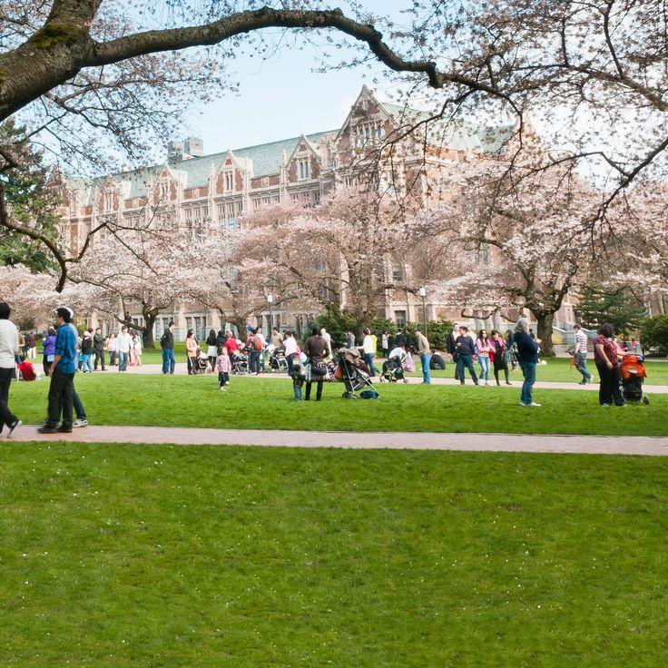 The 25 most beautiful college campuses in America -- University of Washington -- Seattle, Washington