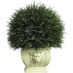 Potted Acorus Grass with White Vase  http://www.google.com/products/catalog?pq=transitional+grass+white+plant&hl=en&sugexp=pfwl&tok=pepnqBv3QS6YyVrdR4Z7bg&ds=pr&cp=22&gs_id=3kb&xhr=t&q=grass+white+plant+faux&client=firefox-a&hs=djL&rls=org.mozilla:en-US:official&gs_upl=&bav=on.2,or.r_gc.r_pw.,cf.osb&biw=1366&bih=612&um=1&ie=UTF-8&tbm=shop&cid=7183682350821498704&sa=X&ei=1-4UT9zrAuSTiQKo9oXNDQ&sqi=2&ved=0CHsQgggwAA#scoring=tp