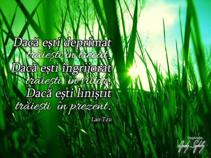 puterea prezentului citat lao tzu