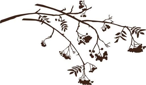 my next tattoo is a tree - rowan