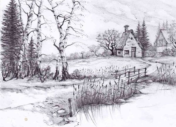 Best 25 Sketches Of Nature Ideas On Pinterest