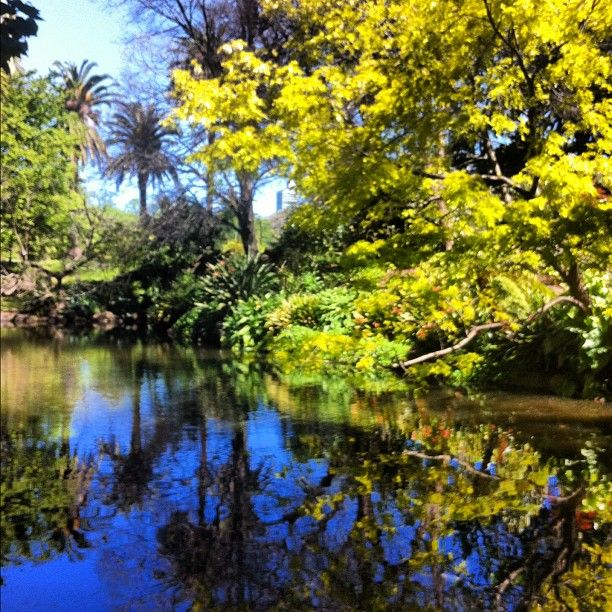 Royal Botanic Gardens nel South Yarra, VIC