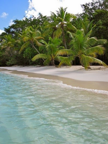 Relax mind in the beach Beach with crystal clear water This undisturbed beach is in Maldives, in the Indian Ocean. With crystal clear skies ...