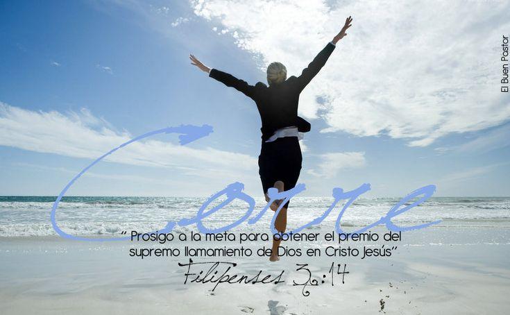 YO SOY EL BUEN PASTOR: Filipenses 3:14