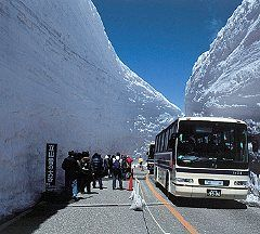 tateyama 雪の大谷ウォーク