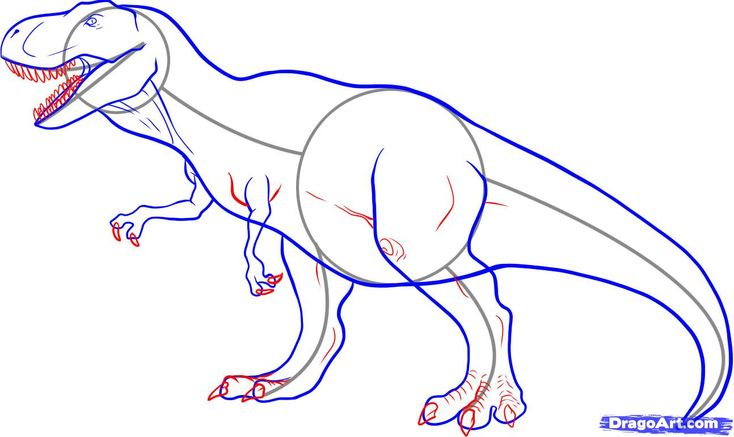 How To Draw A Tyrannosaurus Rex, Step by Step, Dinosaurs, Animals, FREE Online Drawing Tutorial, Added by Dawn, January 13, 2008, 9:44:06 am