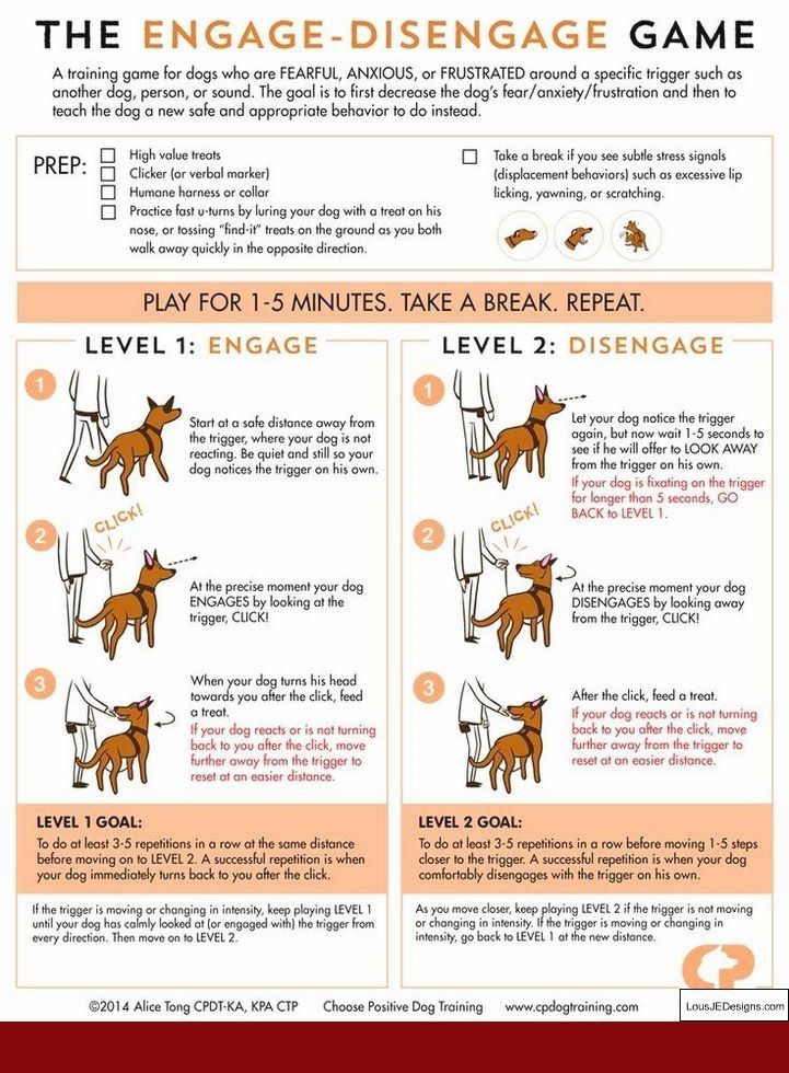 Training Tips For Dogs That Pull And Pics Of How To Train My Dog