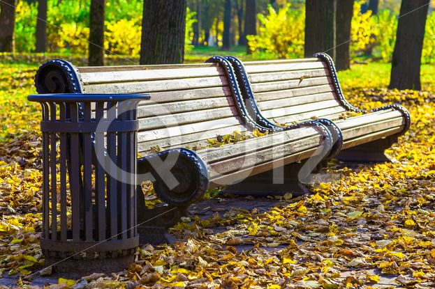 Qdiz Stock Photos | Park Bench in Autumn,  #autumn #background #beautiful #beauty #bench #brown #City #color #colorful #empty #foliage #forest #garden #golden #grass #landscape #leaf #leaves #nature #nobody #orange #outdoor #outdoors #park #peaceful #scene #scenic #season #seat #silence #solitude #tranquil #tree #wood #wooden #yellow
