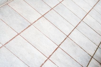 1000 images about stupid dog on pinterest ceramic tile for How do you clean white grout