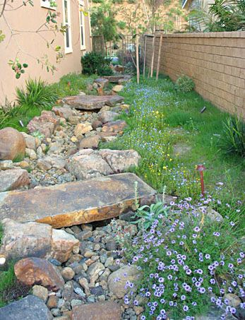 need to direct water away from front of house; a dry creek bed might work.