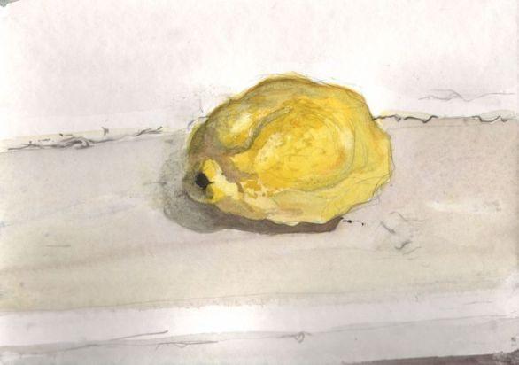 Still life III, 18x25 cm, 2014