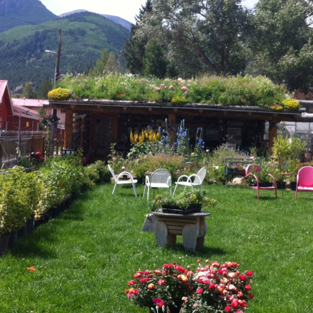 Lake City Co the Potting Shed a very cute shop | Favorite Places ...