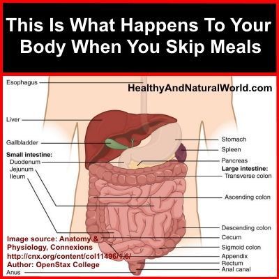 This Is What Happens To Your Body When You Skip Meals IF THIS IS YOU READ THIS! Can't stress it enough!