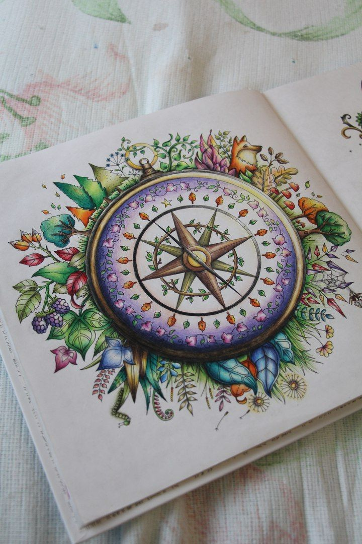 Amazing Coloring From Johanna Basfords Adult Book