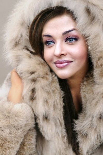 Beauty In Fur