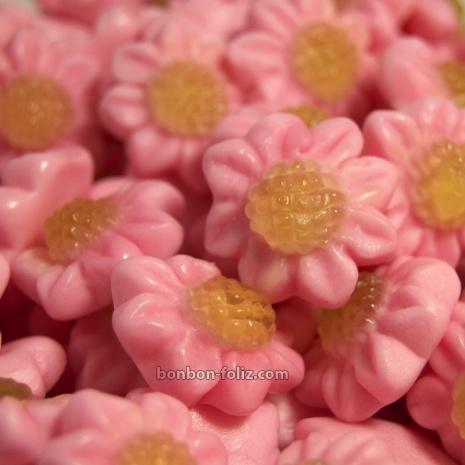 Fleur Bicolore Pierrot Gourmand - Bonbon Foliz : bonbons, caramel, chocolat et confiseries