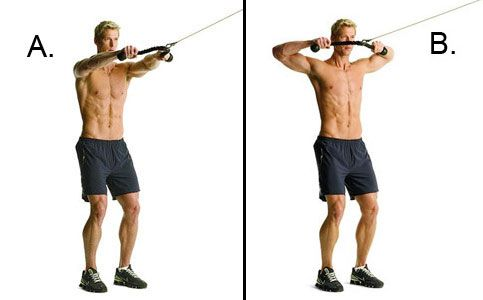 Cable face pulls are a phenomenal (and underrated) way to hit the rear deltoids and upper back. They'll also work on core stability.