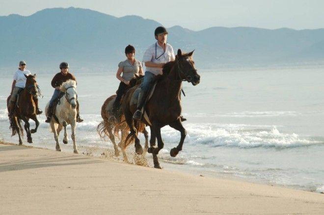 Top 5 Nature Activities in Majorca