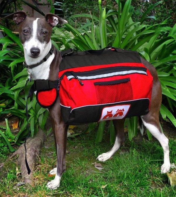 Animais e proprietários muitas vezes se separam durante emergências. Se seu cão está usando sua mochila animal de estimação, quem encontra-lo vai ser capaz de usar os suprimentos para cuidar de seu animal de estimação.