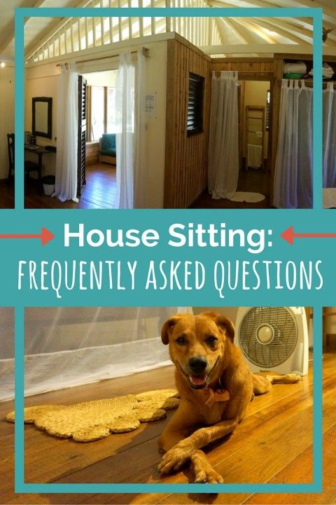 House Sitting- Frequently Asked Questions