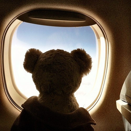 Once again Bear is travelling and wants to ask birds how to fly by himself : Where Bear wants to come along to Holland, even just to stay in a hotel room, and would like to ask the birds how to fly above the white blanket…