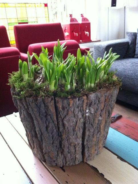 Voorjaar in huis!