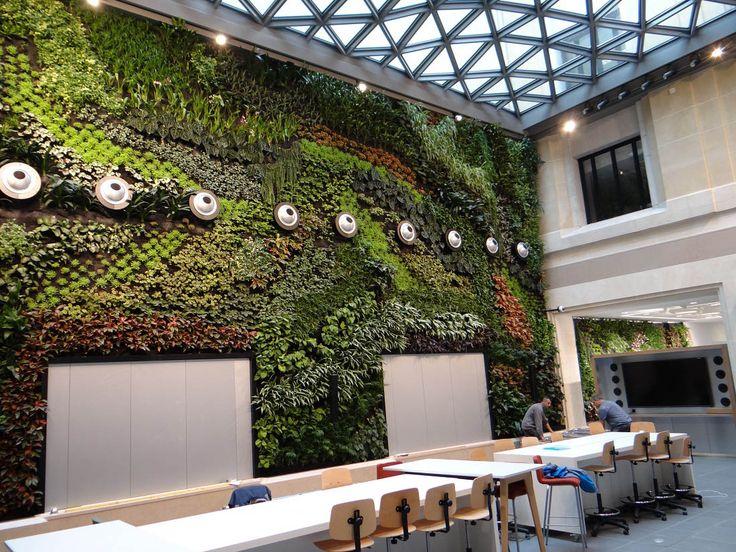 25 best mur v g tal int rieur images by jardins de babylone on pinterest mur vegetal mur - Immeuble vegetal ...