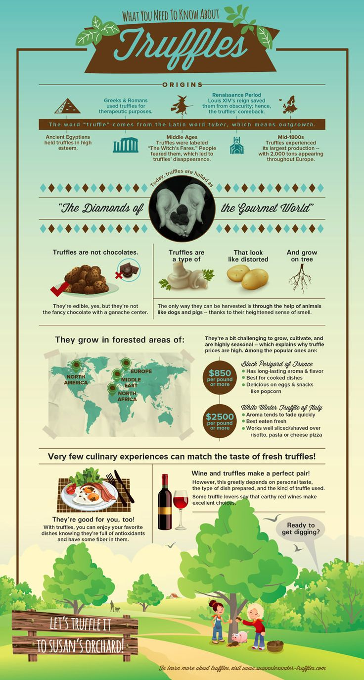 WHAT YOU NEED TO KNOW ABOUT TRUFFLES BY FDL ON MARCH 22, 2014