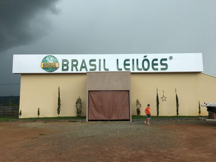 Brasil Leilões