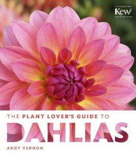 The Plant Lover's Guide to Dahlias: Andy Vernon: 9781604694161: Amazon.com: Books