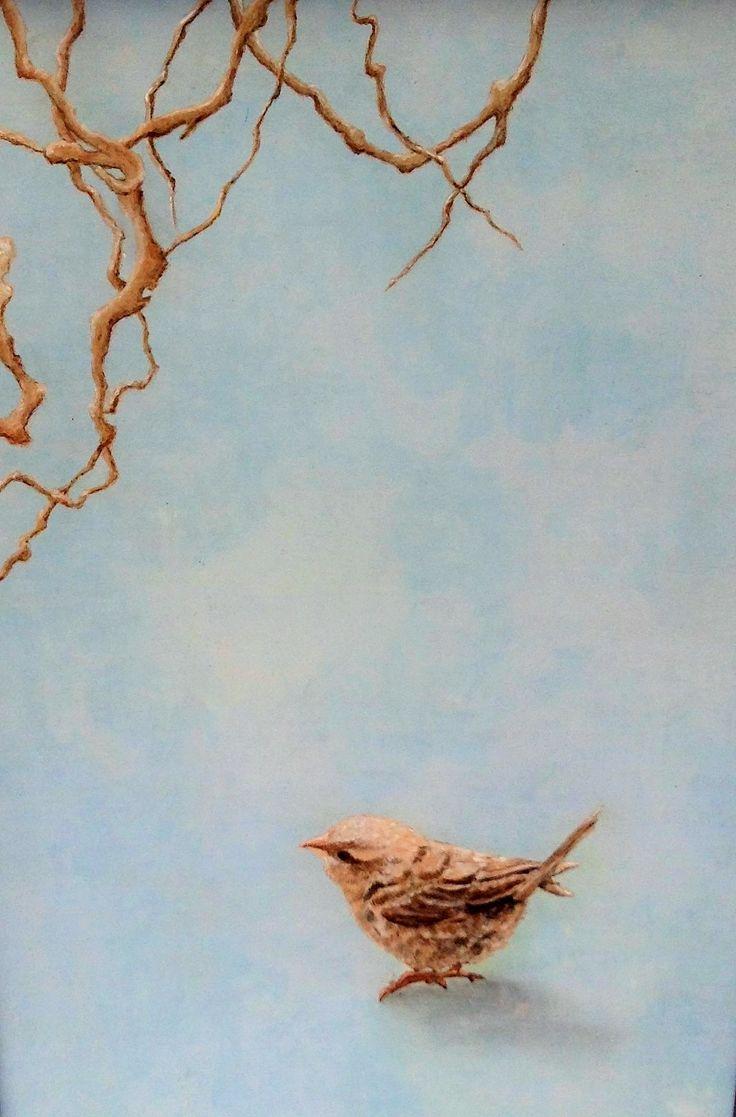 Pájaro fondo azul
