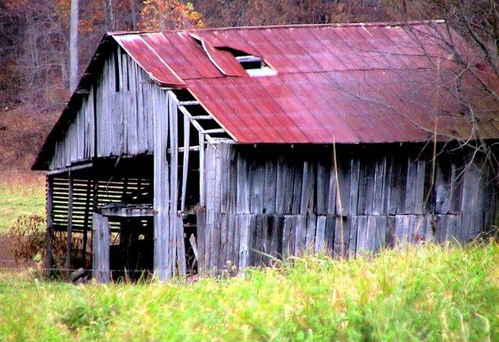 old horse barn in autumn