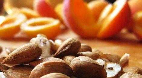 Vitamina B17 dei semi di albicocca: previene e cura il cancro