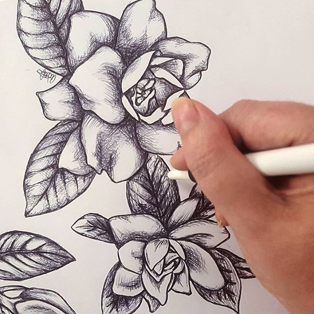 havana_homeAt Havana Home we want every part of your purchase to be beautiful! This stunning drawing will soon be wrapped around our gorgeous new gardenia fragrance! Well done Amy