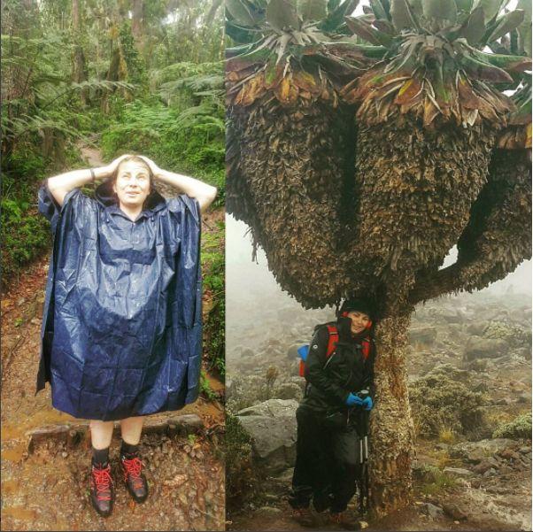 #samaprzezświat #polishgirl #wakacje #kilimanjaro #góry #climbinggirl #podróż #wyprawa #przygoda #deszcz #walka #blogipodroznicze #dlaczego #afryka #kaktus #drzewo #wspinanie #lifeinism #marzenia #solotravel #podróżniczka