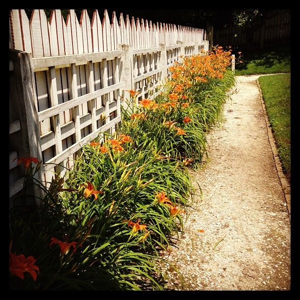 Kitchen Garden Ideas Pinterest: Orange Blooms In The Palace Kitchen Garden, @Melissa