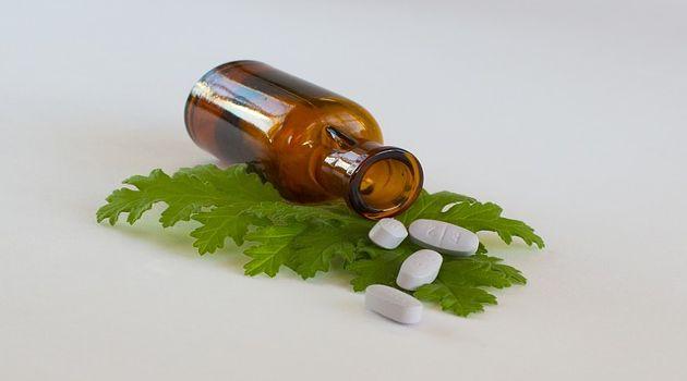 Las 10 plantas medicinales más poderosas