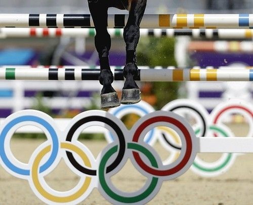 Jump on the Olympic Show Jumping Course