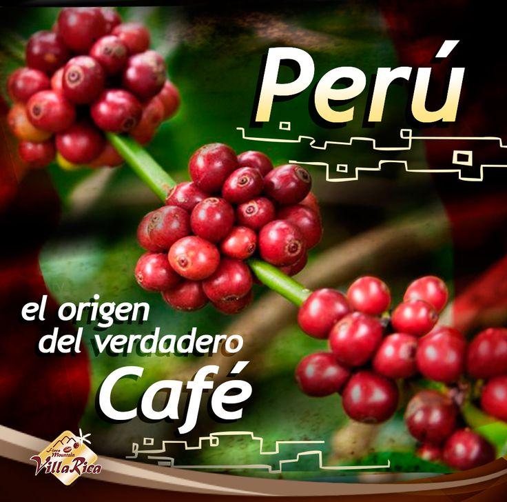 El Origen del Verdadero Café