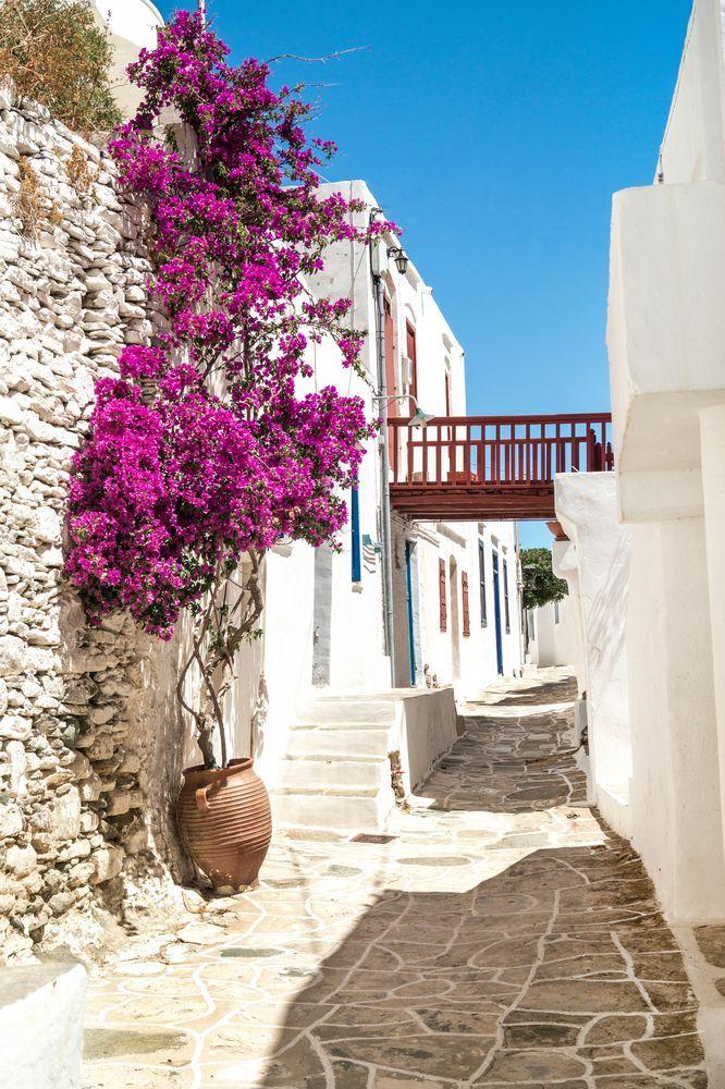 VISIT GREECE  Traditional Greek alley in #Sifnos #visitgreece #greece