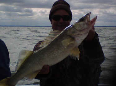 117 best images about fish on on pinterest walleye for Lake erie western basin fishing report