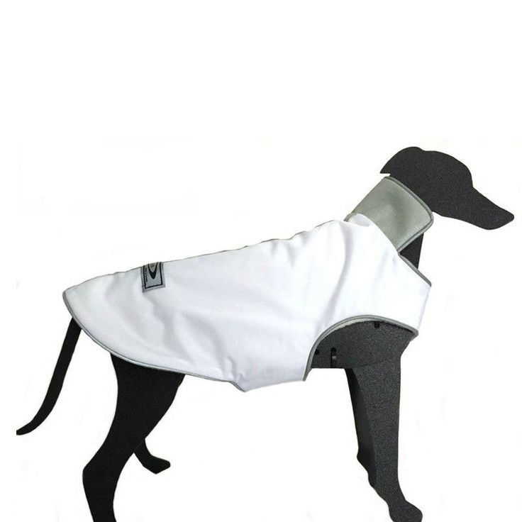 The Trench Waterproof Dog Coat