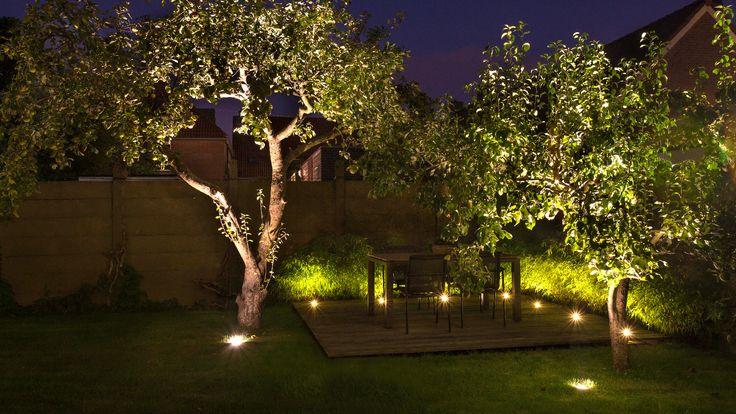 Buitenverlichting tuin vlonder bamboe grondspot nero db led in lite grondspots - Buitenverlichting design tuin ...