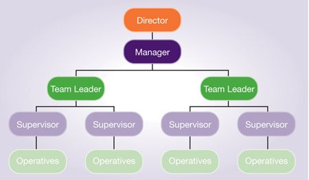robin hood needs to develop a new organization structure resulting to lead for discipline Npd project organization structure organizational structure depends on the product to be developed functional organizations are organized according to technological disciplines products that need a high level of specialized knowledge require a functionally organized structure.