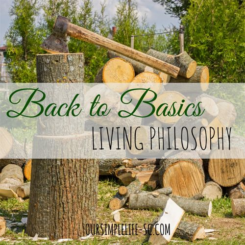 Our Back to Basics Living Philosophy -  With one swoop of a for-sale sign, and a business up for auction they traded in a life of possession obsession for a life of personal fulfillment. http://oursimplelife-sc.com #simpleliving
