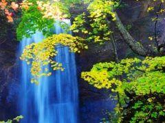 北海道の定山渓温泉で人気の観光地の一つといえば白糸の滝 白糸の滝は北海道で稼動する最古の水力発電所である定山渓発電所の戻り水が流れ落ちる小さな滝 初夏の緑から紅葉の秋まで移り行く自然の景観の中で多様に表情を変える滝の美しさを楽しむことができますよ tags[北海道]