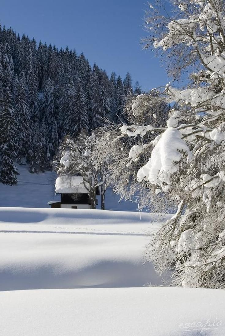 Hotel riu palace tres islas wellnesshotel strand van corralejo - Traumhotel Alpina Gerlos Tirol Sterreich