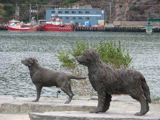 The Newfoundland dog and Labrador retriever statue on Signal hill. St. John's Newfoundland, Canada