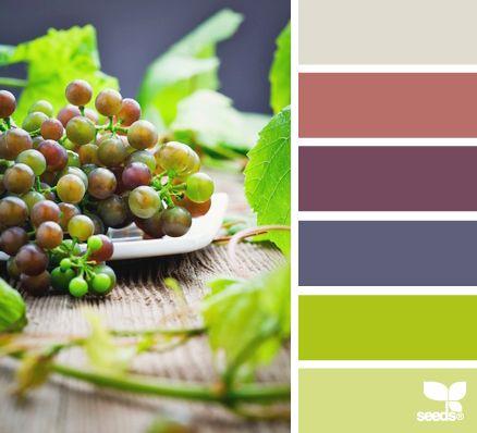 283 Best Images About Design Seeds For Color Inspiration On Pinterest Color
